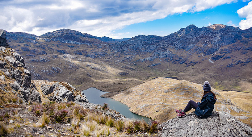 cajas view